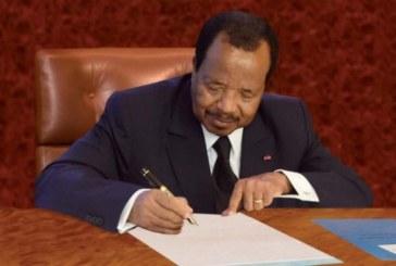 Cameroun: les municipales reportées une deuxième fois, jusqu'au 29 février 2020